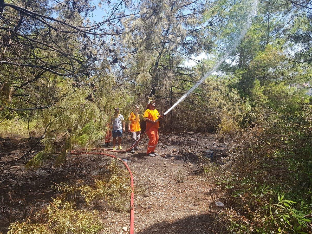 Kemer'de 3 alanda başlayan orman yangını söndürüldü #6