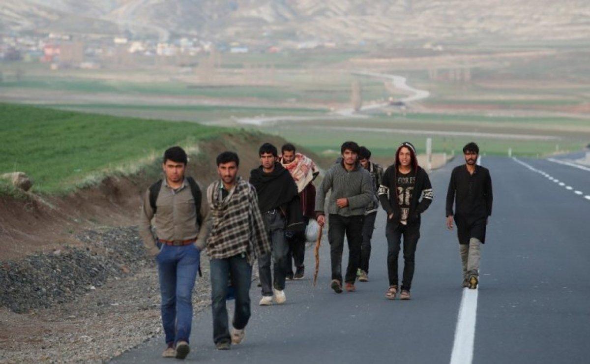 ABD den yeni Afgan göçmen programı #1