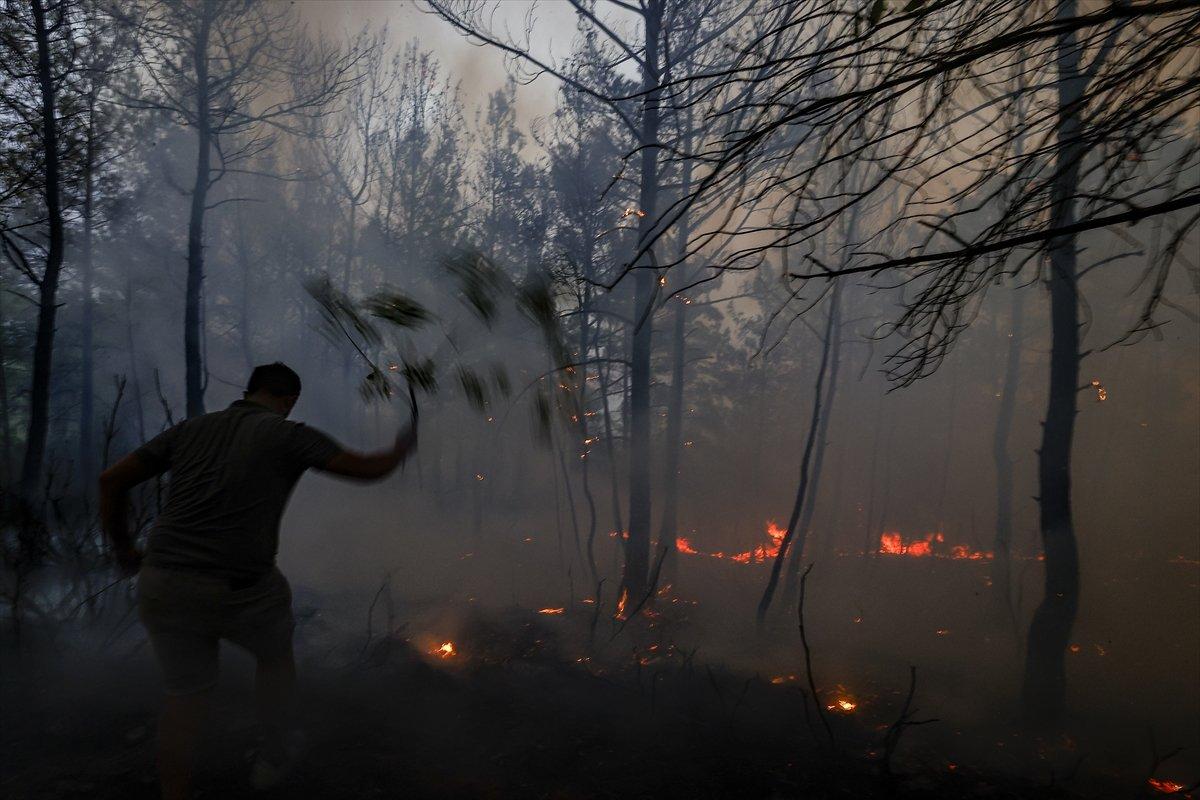 Türkiye de orman yangınlarının devam ettiği bölgeler #2