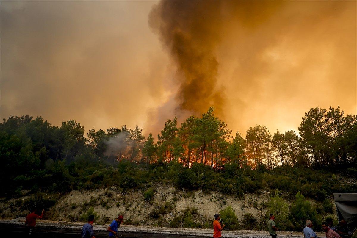 Türkiye de orman yangınlarının devam ettiği bölgeler #3