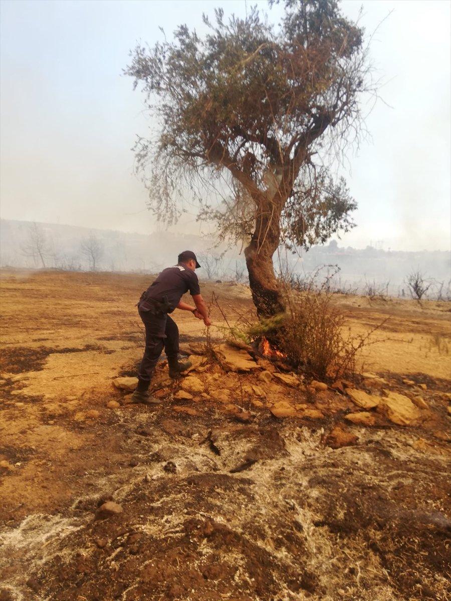 Mahsun Kırmızıgül: Orman yangınlarında askerler neden kışlada #15