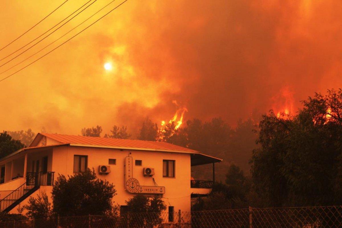 Muğla da 40 bin hektarlık alan yangından zarar gördü #4