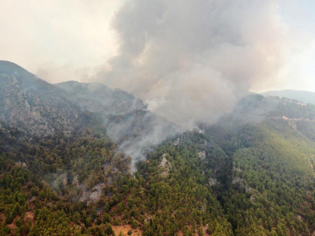 Muğla da 40 bin hektarlık alan yangından zarar gördü #6