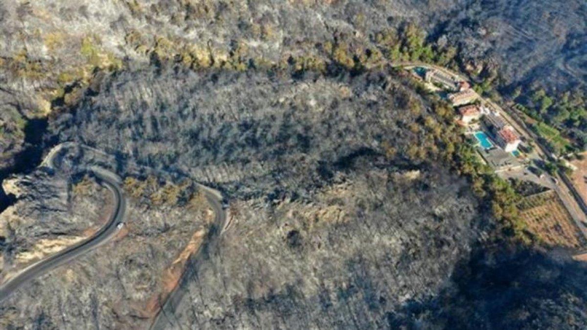 Muğla da 40 bin hektarlık alan yangından zarar gördü #3