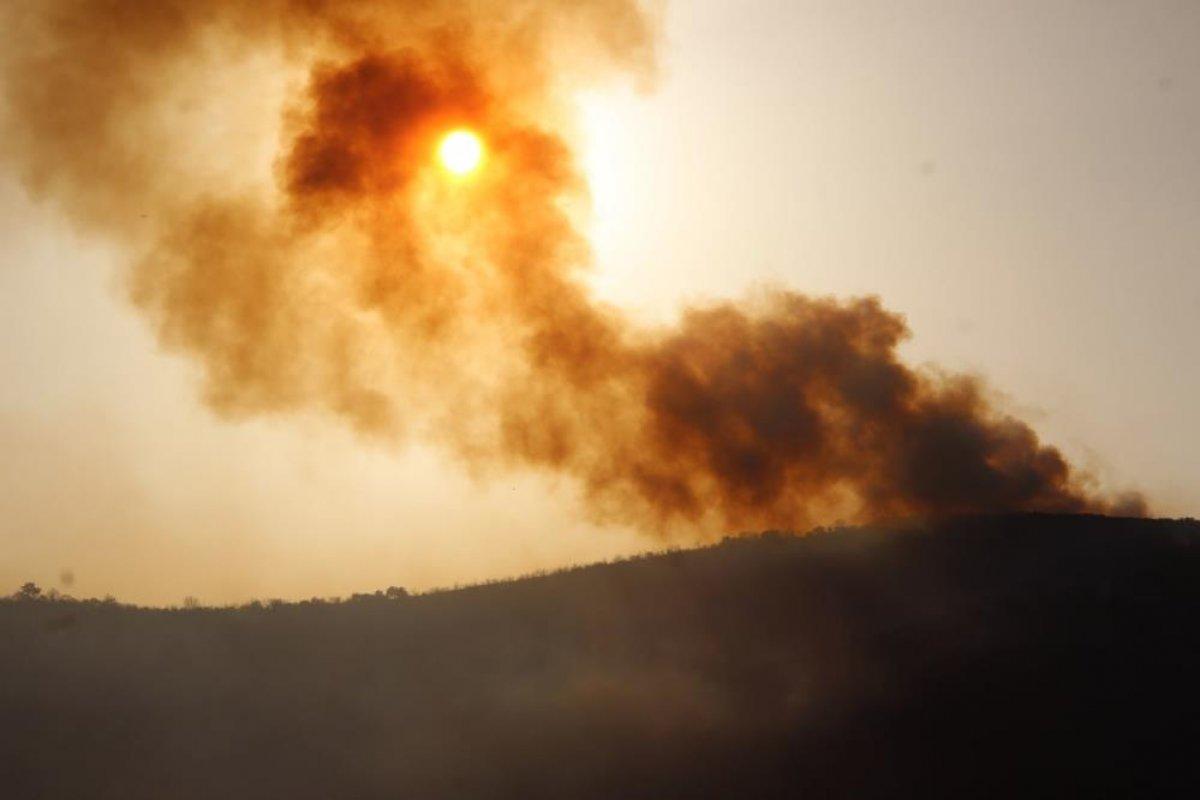 Muğla da 40 bin hektarlık alan yangından zarar gördü #5