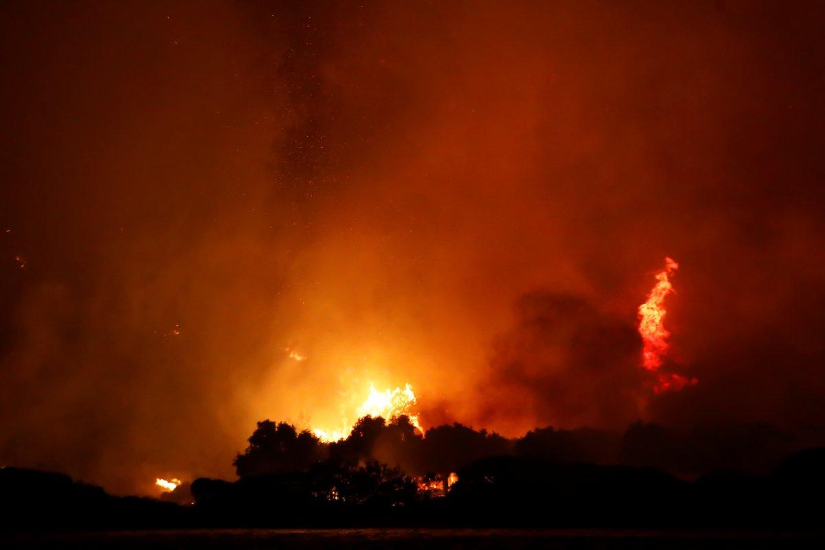 Dünya, orman yangınlarının etkisi altında #9