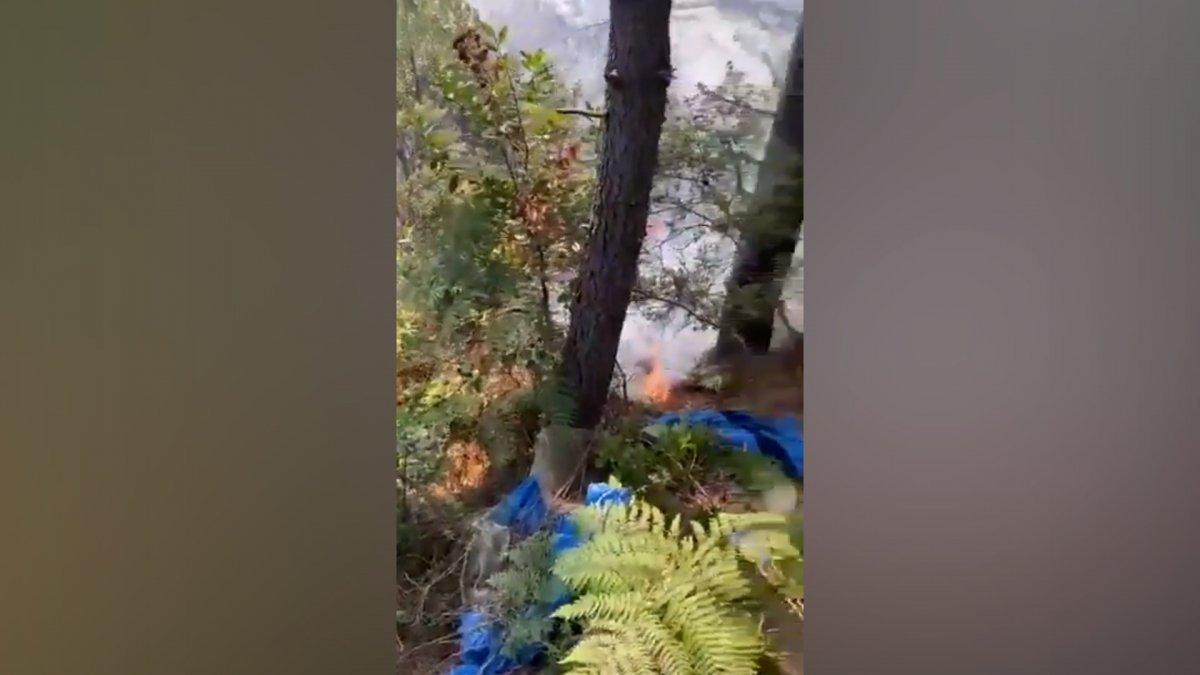 Beykoz da orman yangını #2