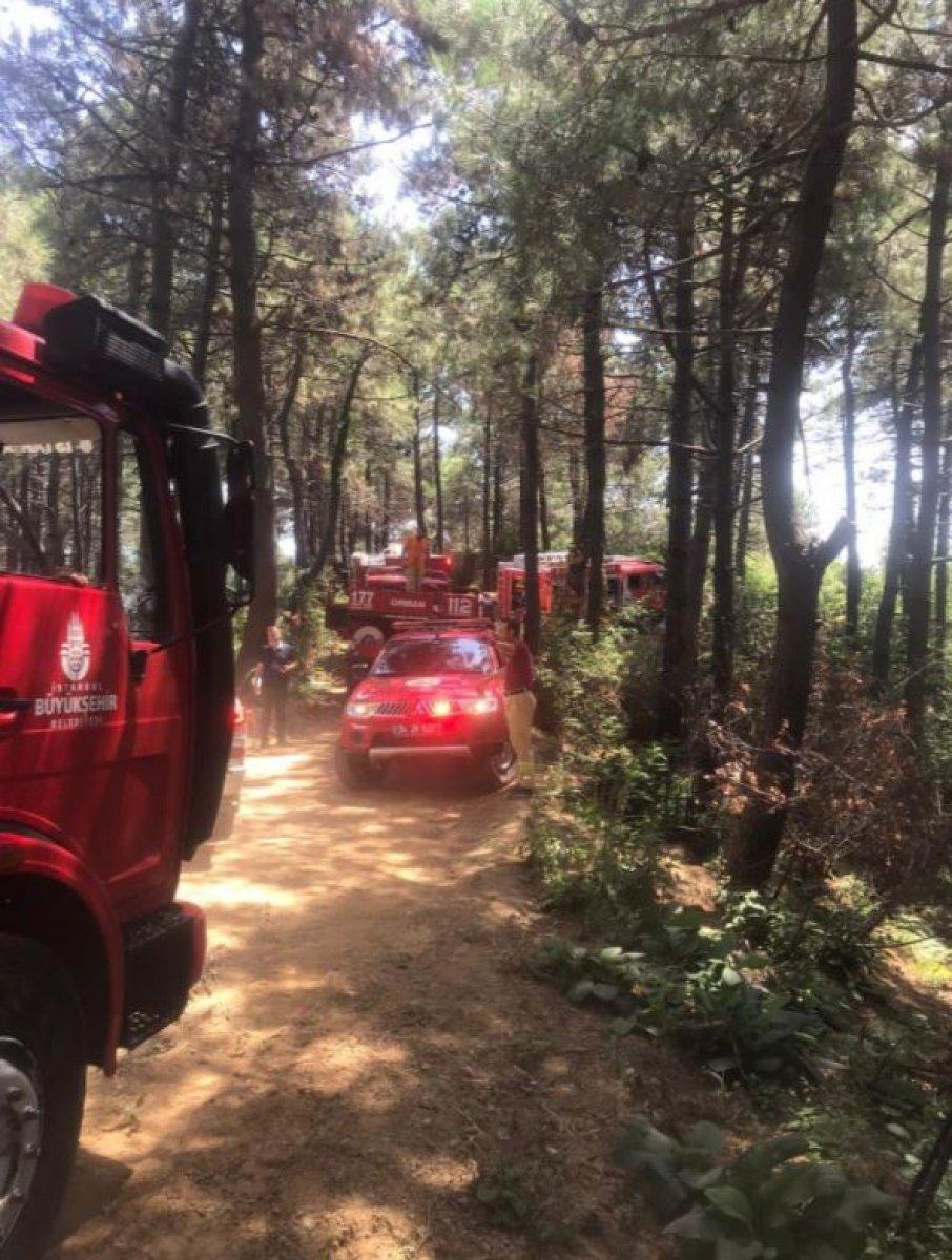 Beykoz da orman yangını #5