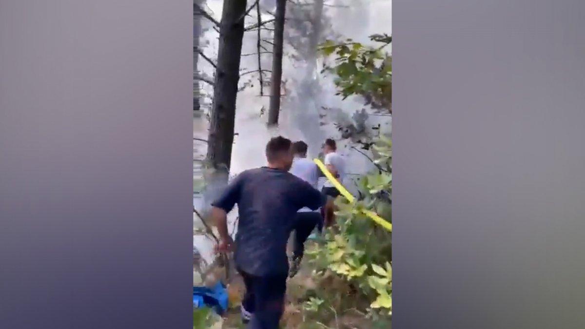 Beykoz da orman yangını #1