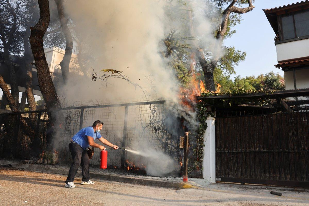 Dünya, orman yangınlarının etkisi altında #3