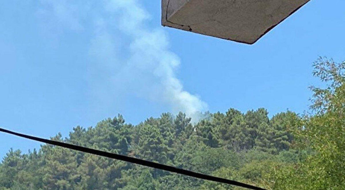 Beykoz da orman yangını #3