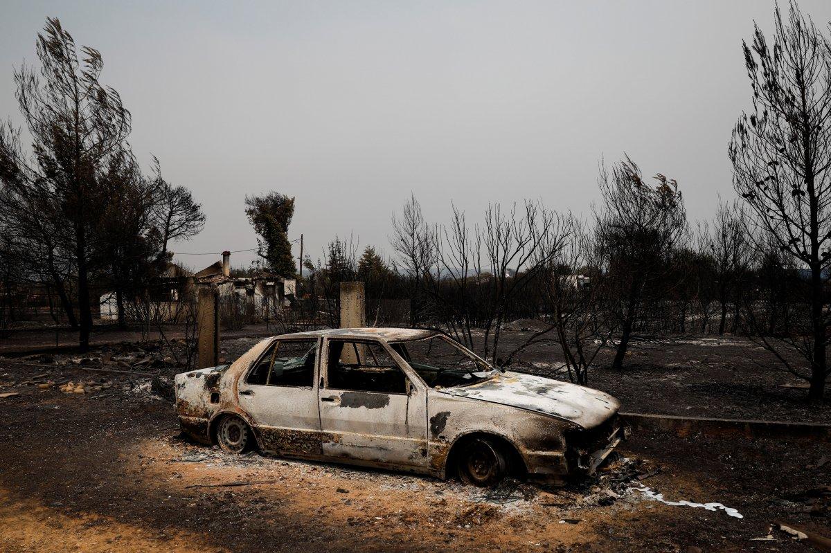 Dünya, orman yangınlarının etkisi altında #6