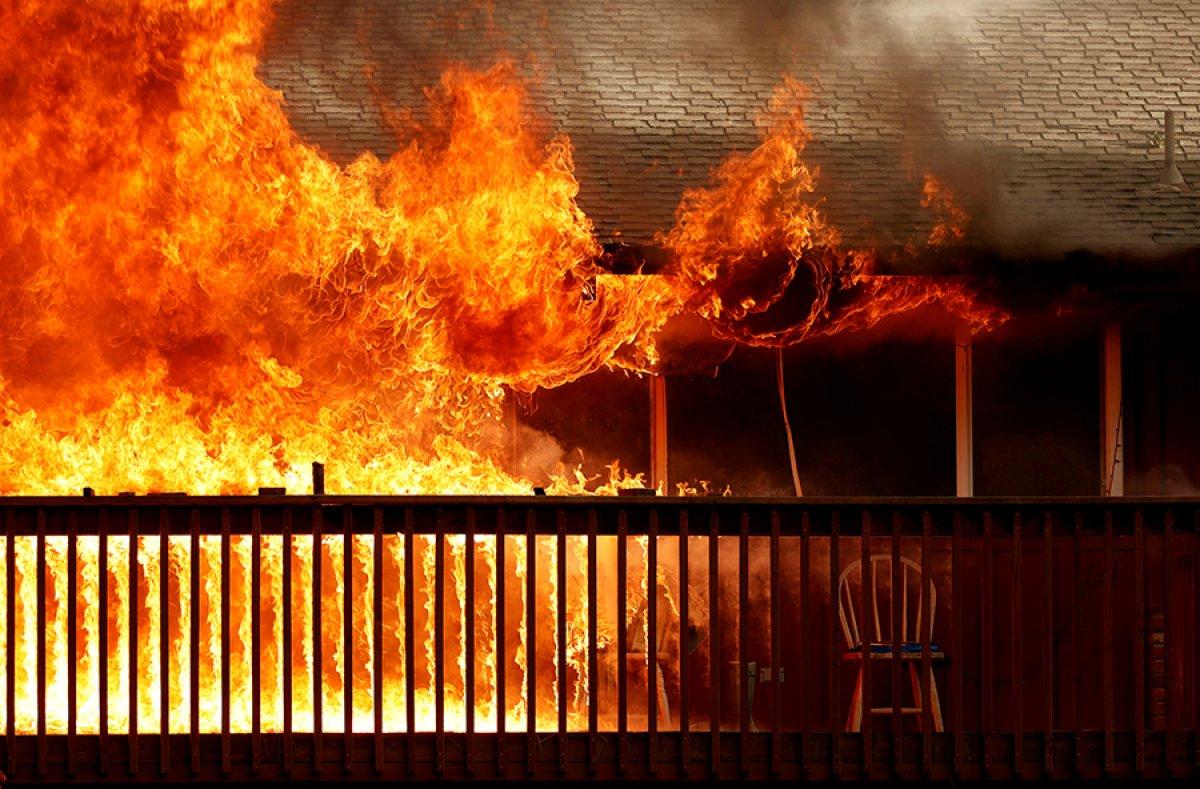 Kaliforniya da orman yangını yeniden büyümeye başladı #1