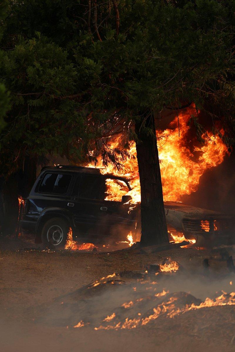 Kaliforniya da orman yangını yeniden büyümeye başladı #9