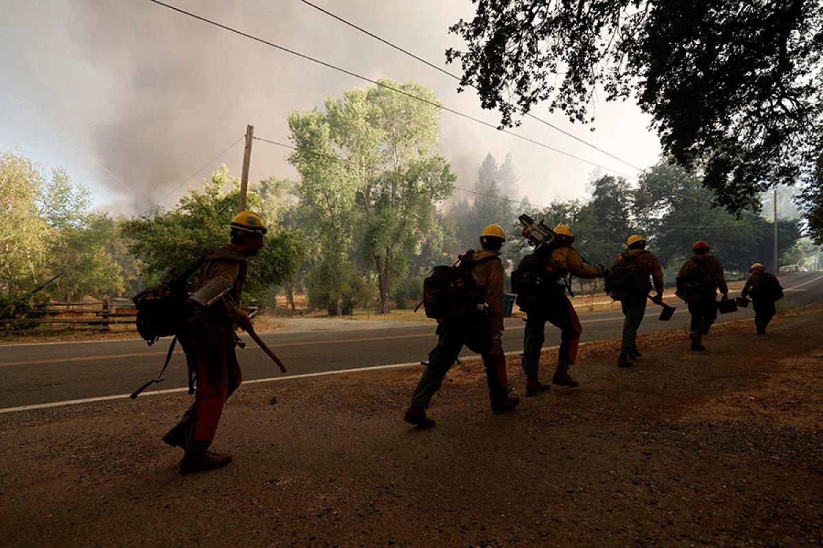 Kaliforniya da orman yangını yeniden büyümeye başladı #3