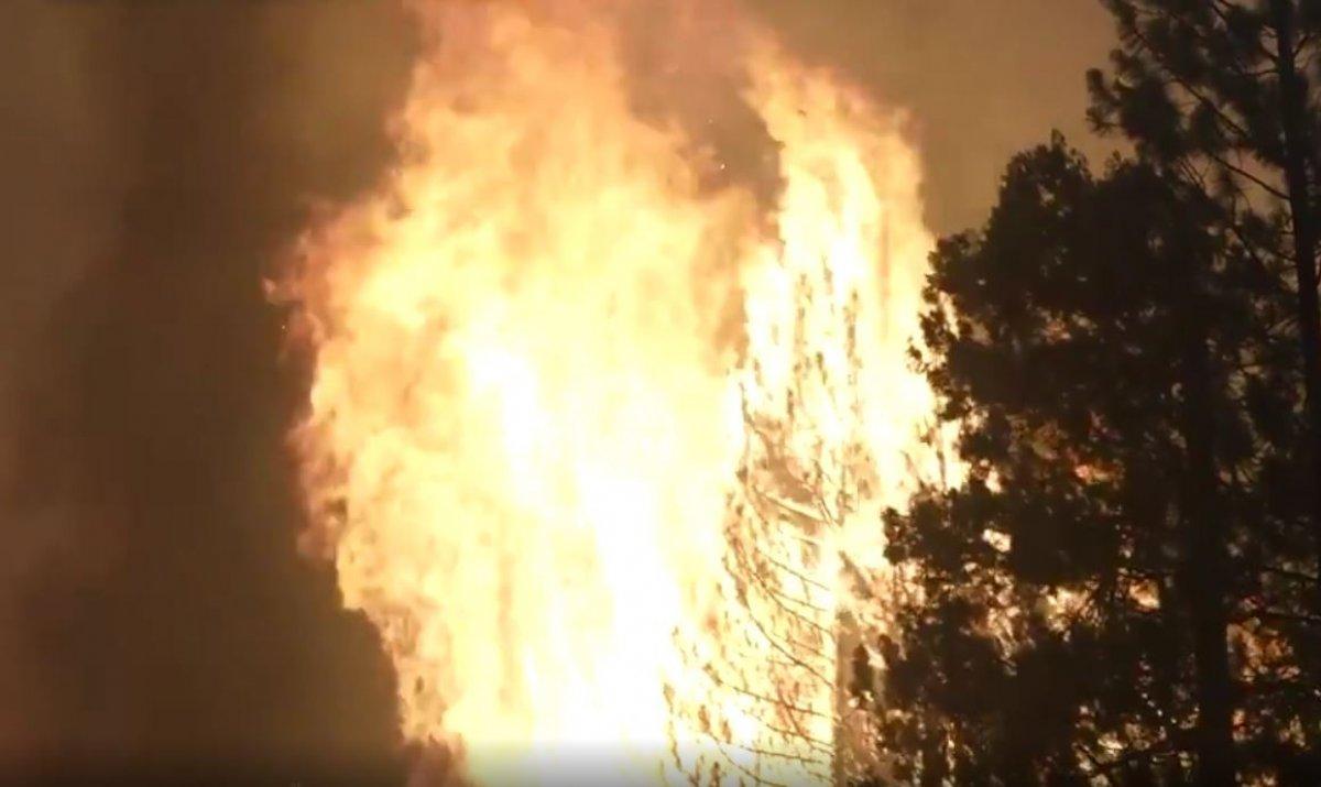 Kaliforniya da orman yangını yeniden büyümeye başladı #4