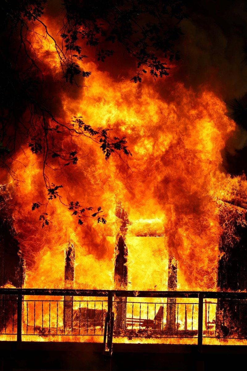 Kaliforniya da orman yangını yeniden büyümeye başladı #8