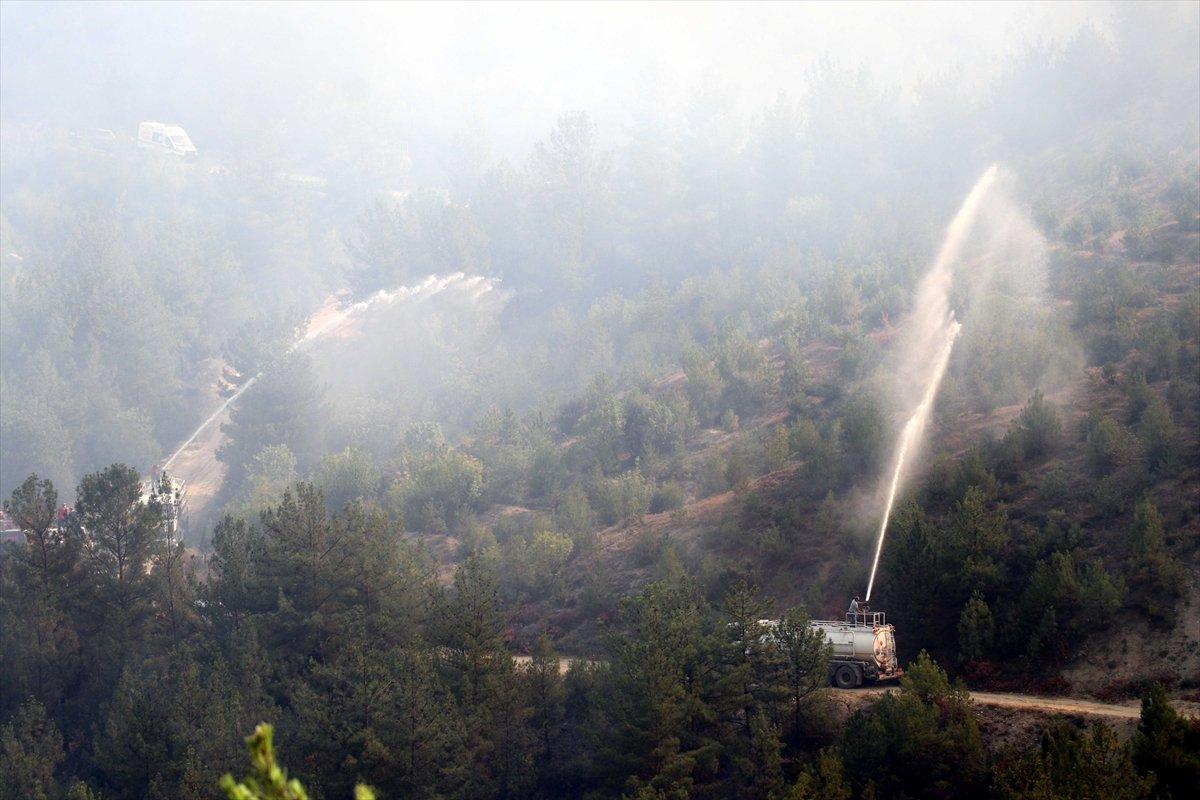 Orman yangınlarıyla mücadelede son durum  #3