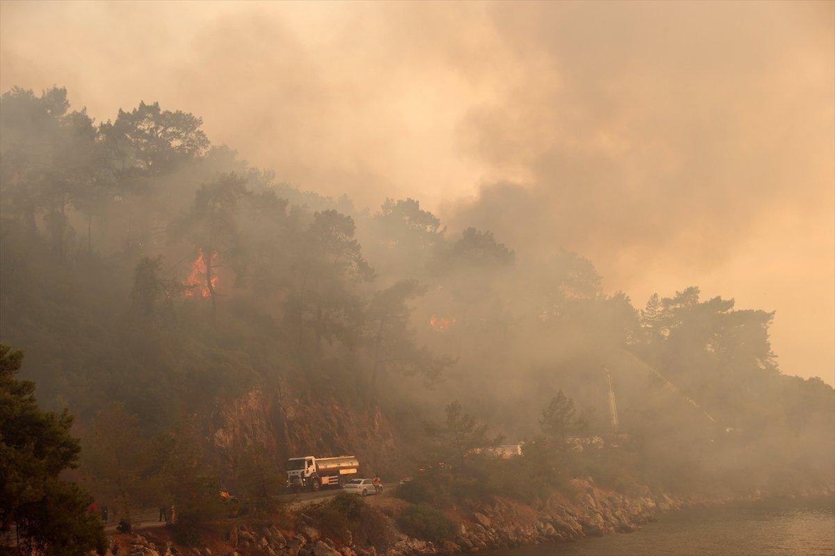 Orman yangınlarıyla mücadelede son durum  #5
