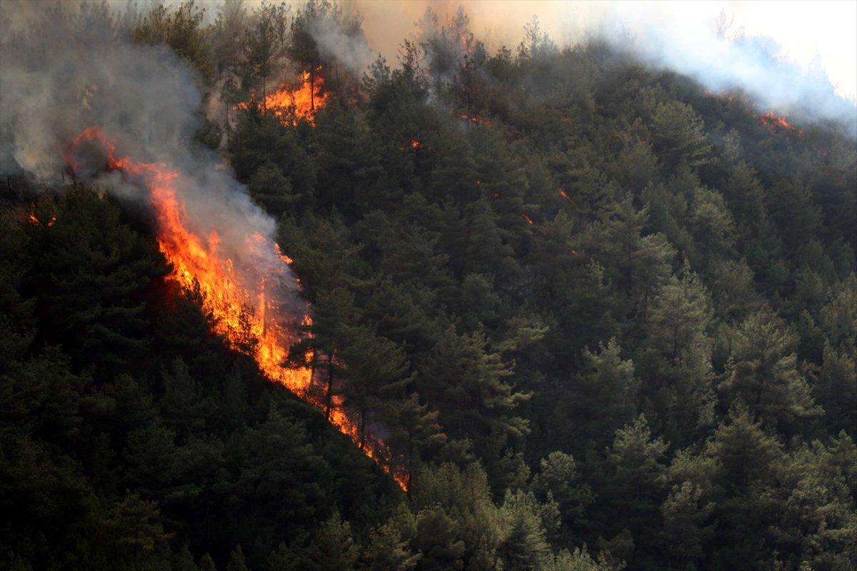 Orman yangınlarıyla mücadelede son durum  #2
