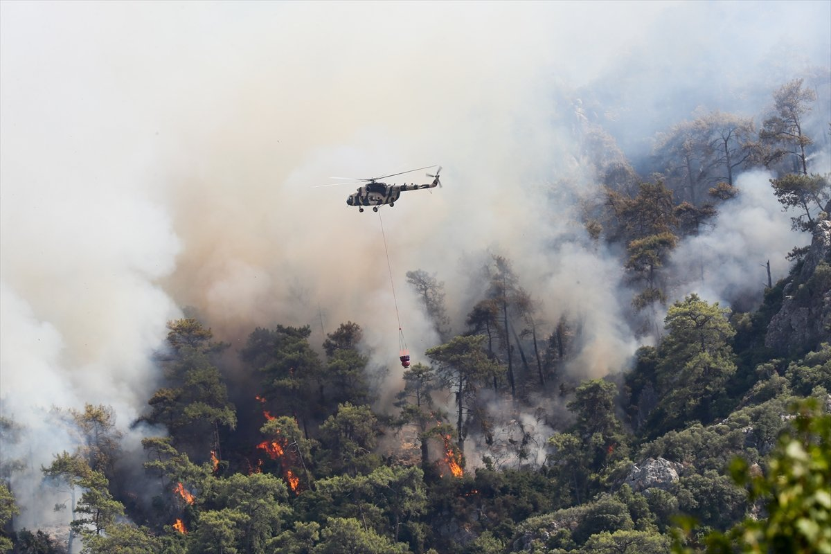 Orman yangınlarıyla mücadelede son durum  #4