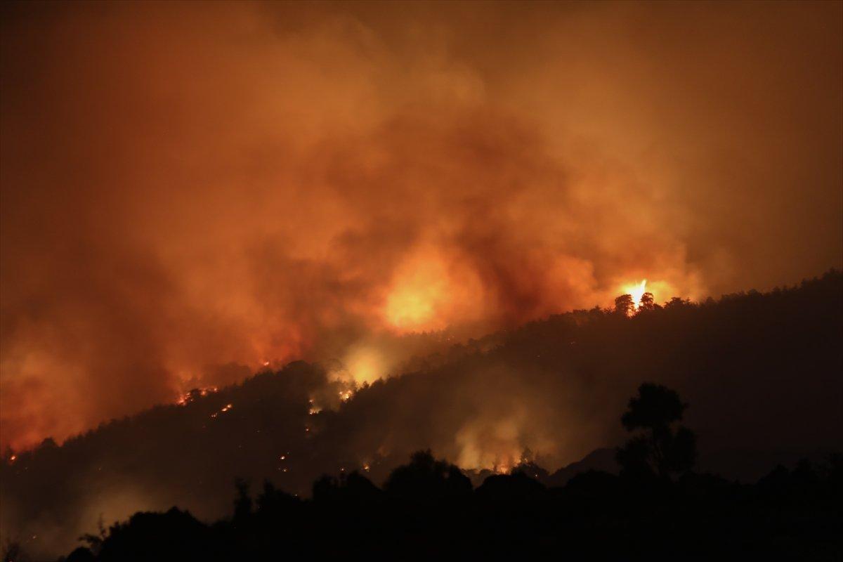 Aydın daki orman yangınına müdahaleler devam ediyor #1