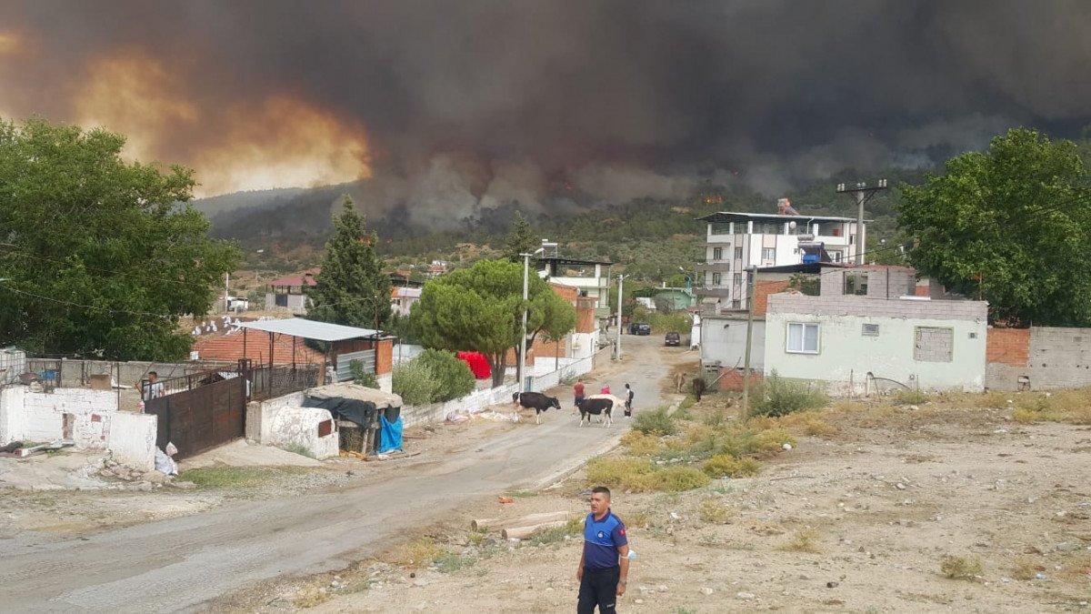 Çine de çıkan orman yangını nedeniyle 6 mahalle boşaltıldı #1