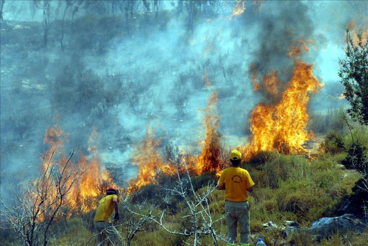 Yangın bölgelerine 72,5 milyon lira nakdi yardım gönderildi #5