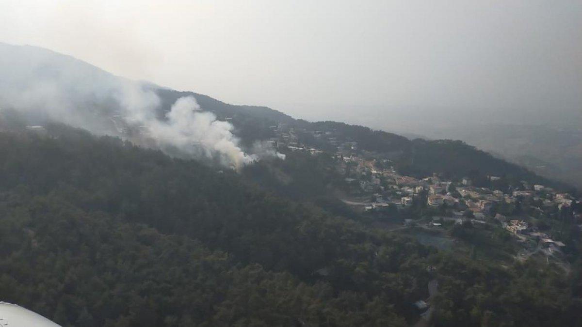 Hatay da orman yangını  #2