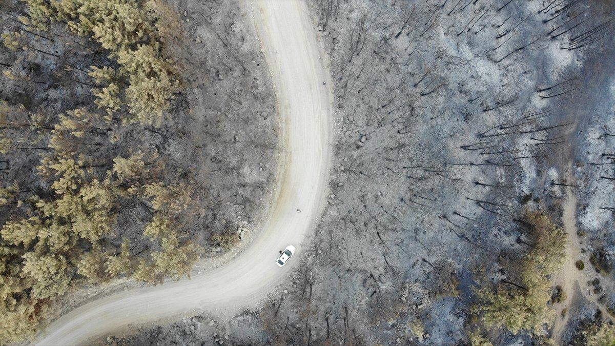 Manavgat yangınında zarar gören alanlar #2
