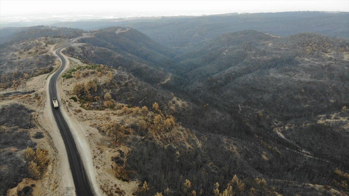 Manavgat yangınında zarar gören alanlar #5