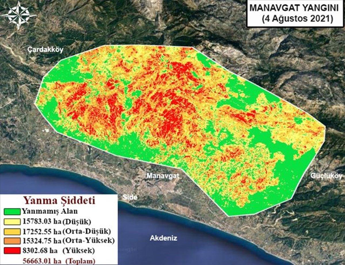 Orman yangınlarının etkili olduğu alanlar haritalandırıldı #1