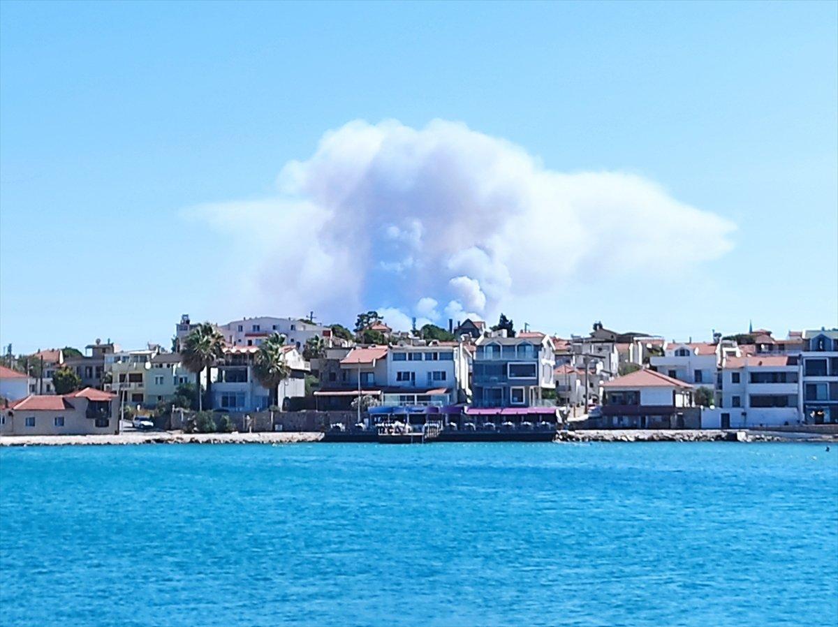 İzmir Urla da orman yangını #3