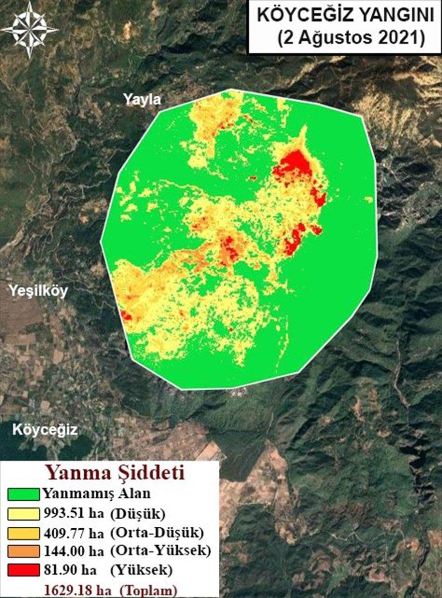 Orman yangınlarının etkili olduğu alanlar haritalandırıldı #5