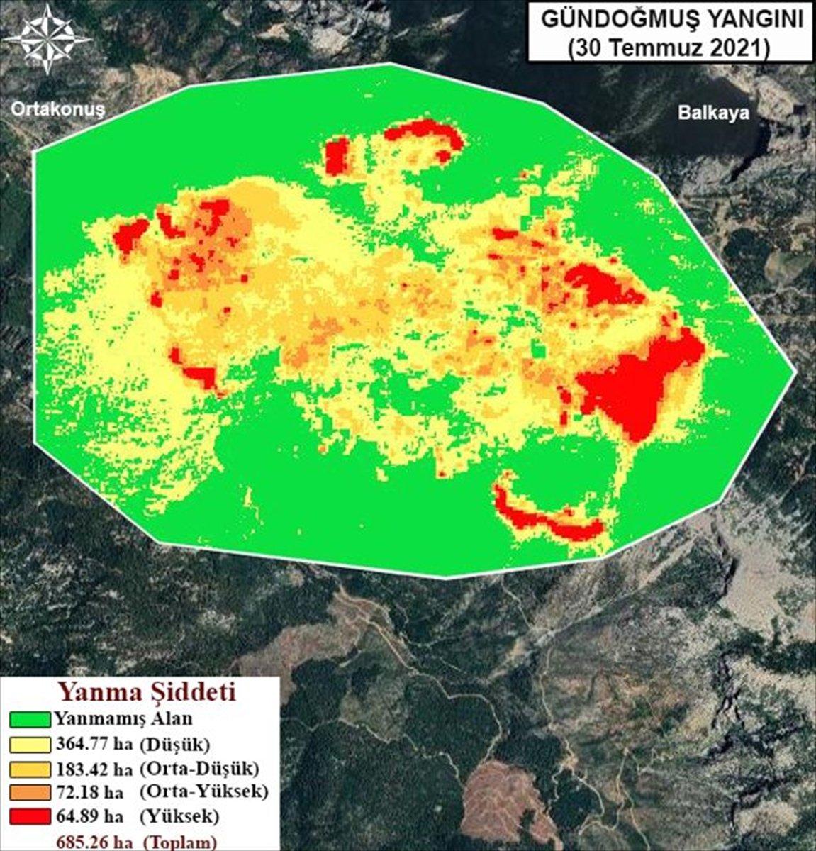 Orman yangınlarının etkili olduğu alanlar haritalandırıldı #2