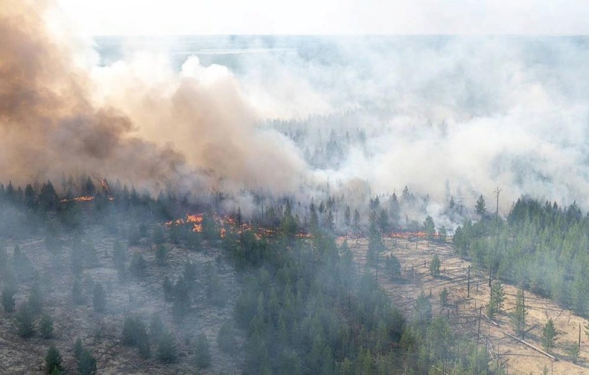 Sibirya daki orman yangınları yerleşim yerlerine ilerliyor #2