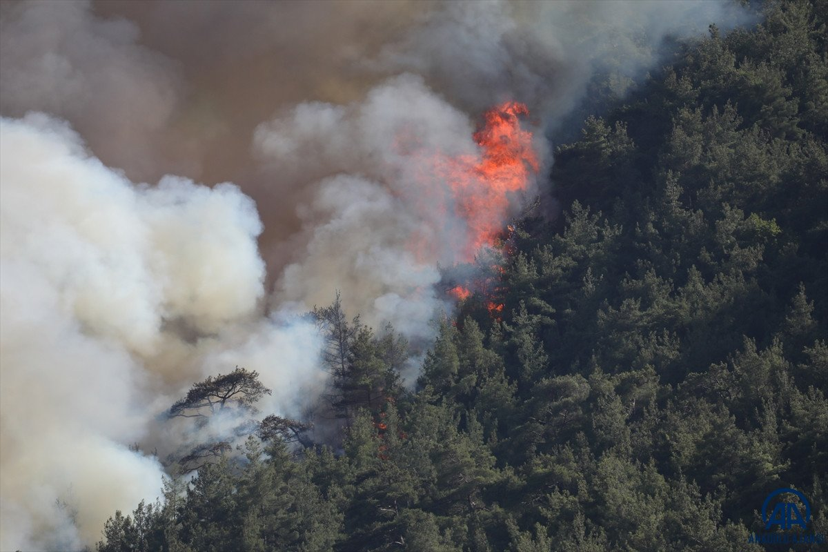 Orman yangınını söndürmek kadar hayati olan işlem: Soğutma #6