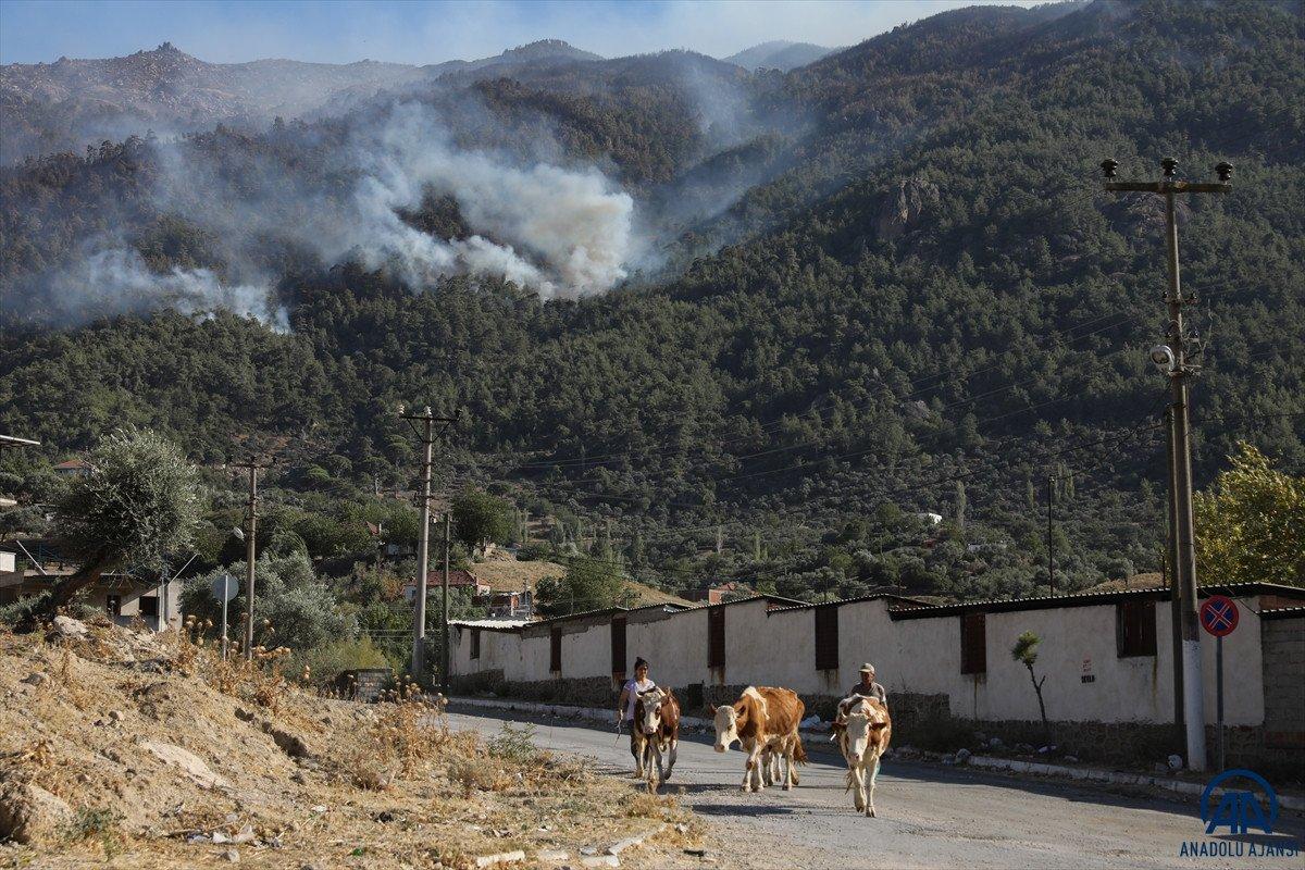 Orman yangınını söndürmek kadar hayati olan işlem: Soğutma #7