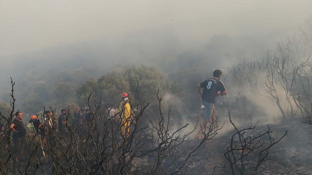 Datça da makilik ve zeytinlik alanda yangın çıktı #8