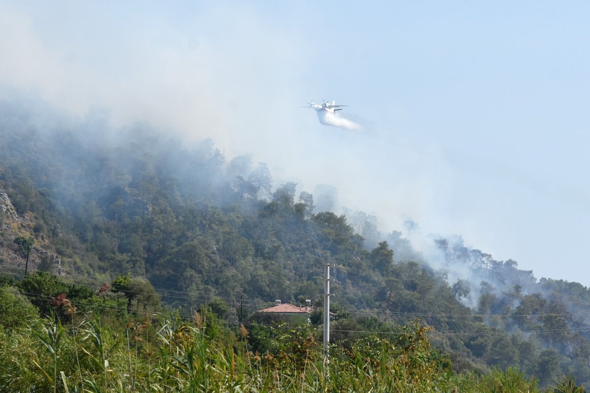 Dalaman da orman yangını çıktı #6
