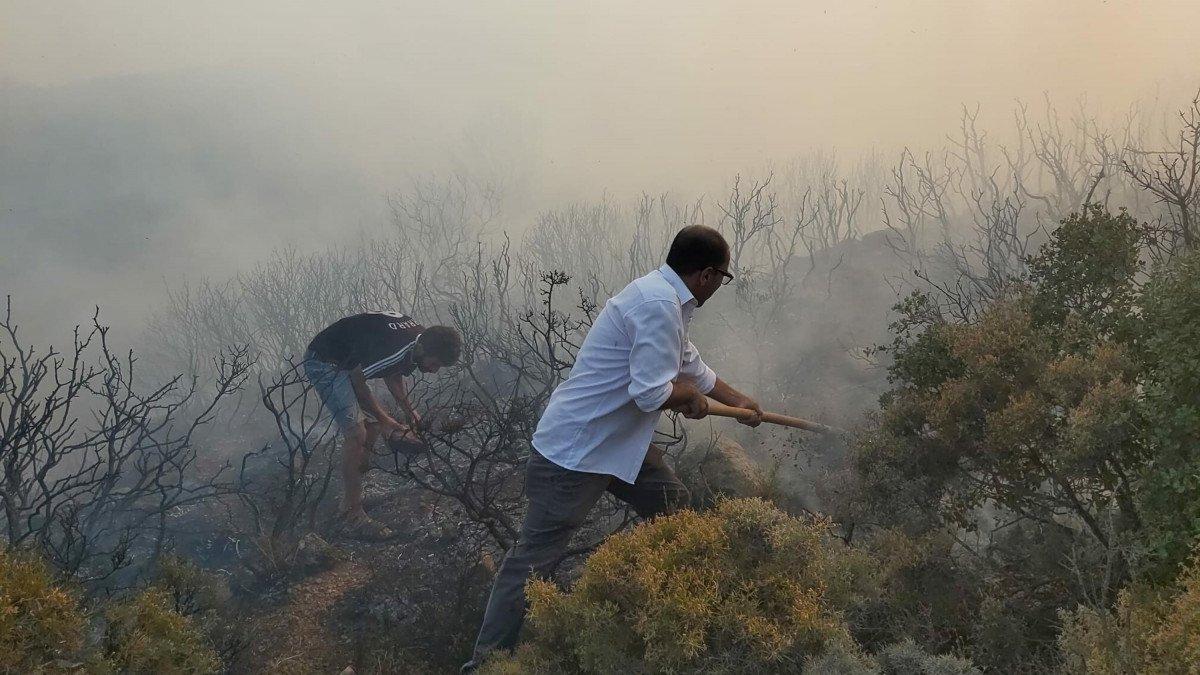 Datça da makilik ve zeytinlik alanda yangın çıktı #1
