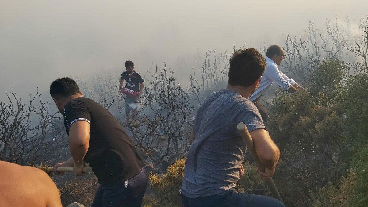 Datça da makilik ve zeytinlik alanda yangın çıktı #7