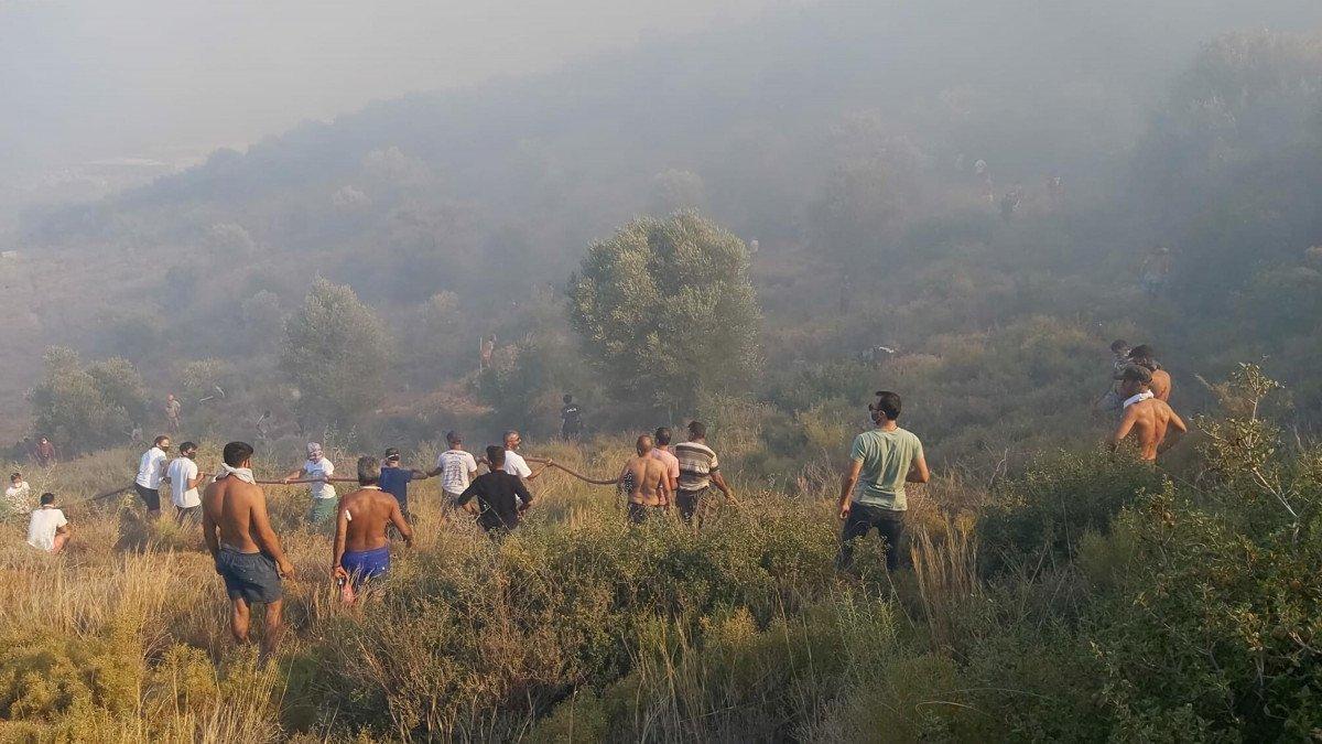 Datça da makilik ve zeytinlik alanda yangın çıktı #9