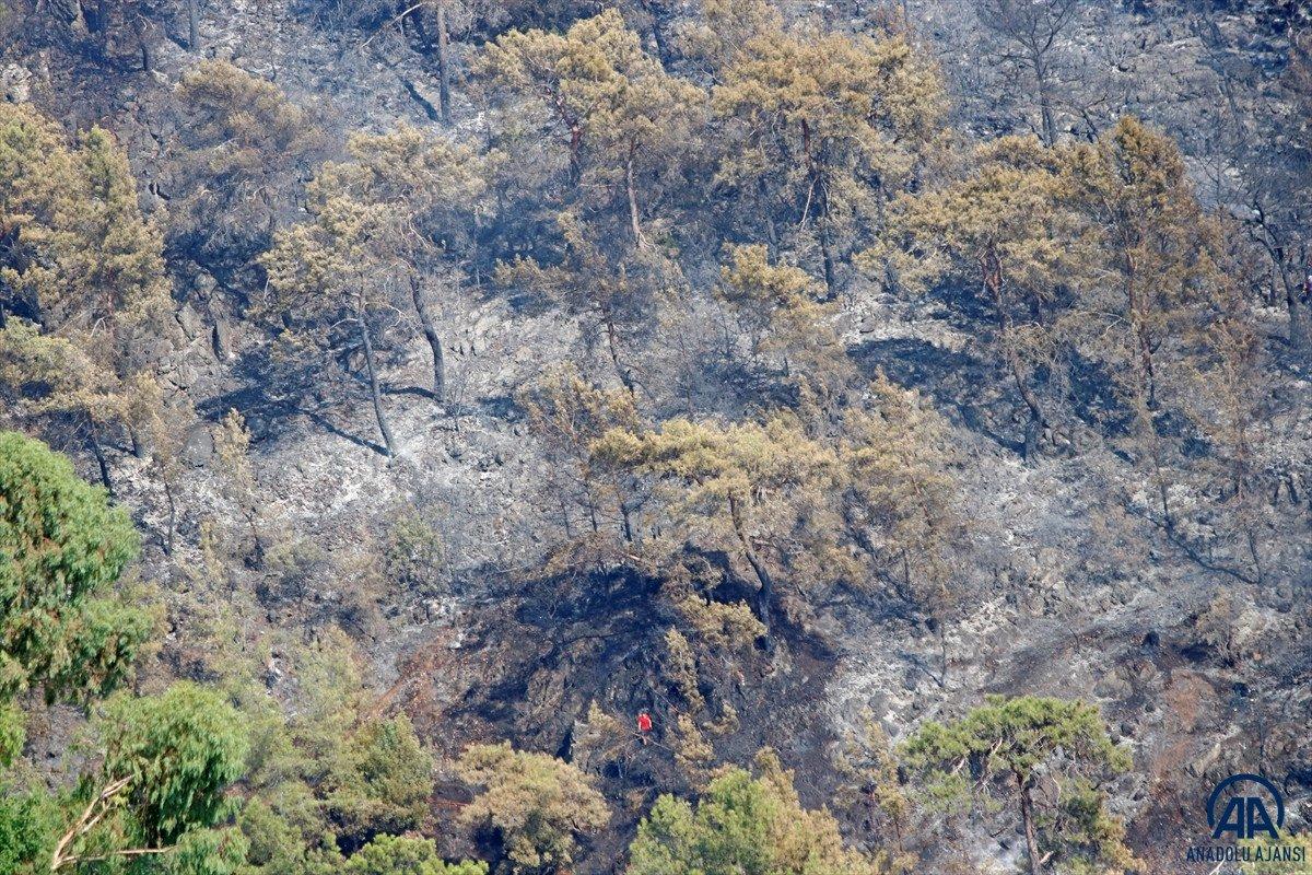 Dalaman da orman yangını çıktı #3