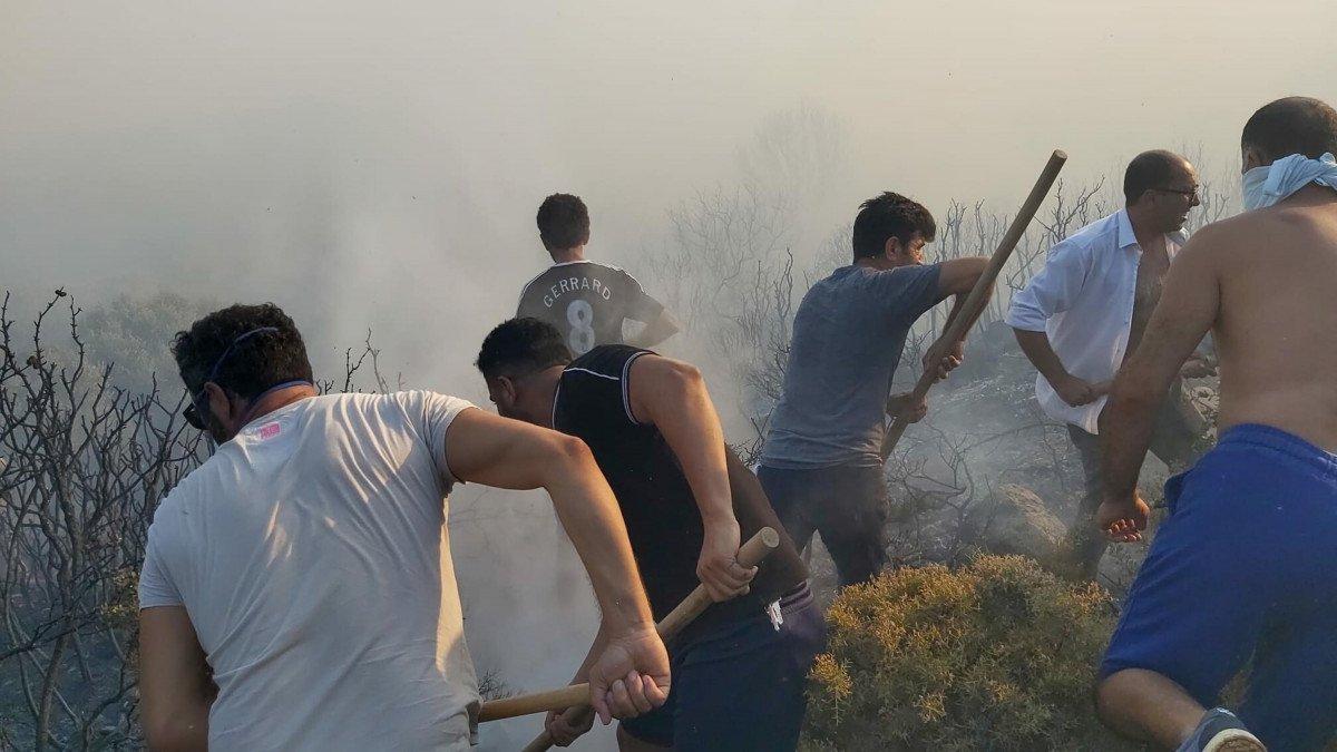 Datça da makilik ve zeytinlik alanda yangın çıktı #4