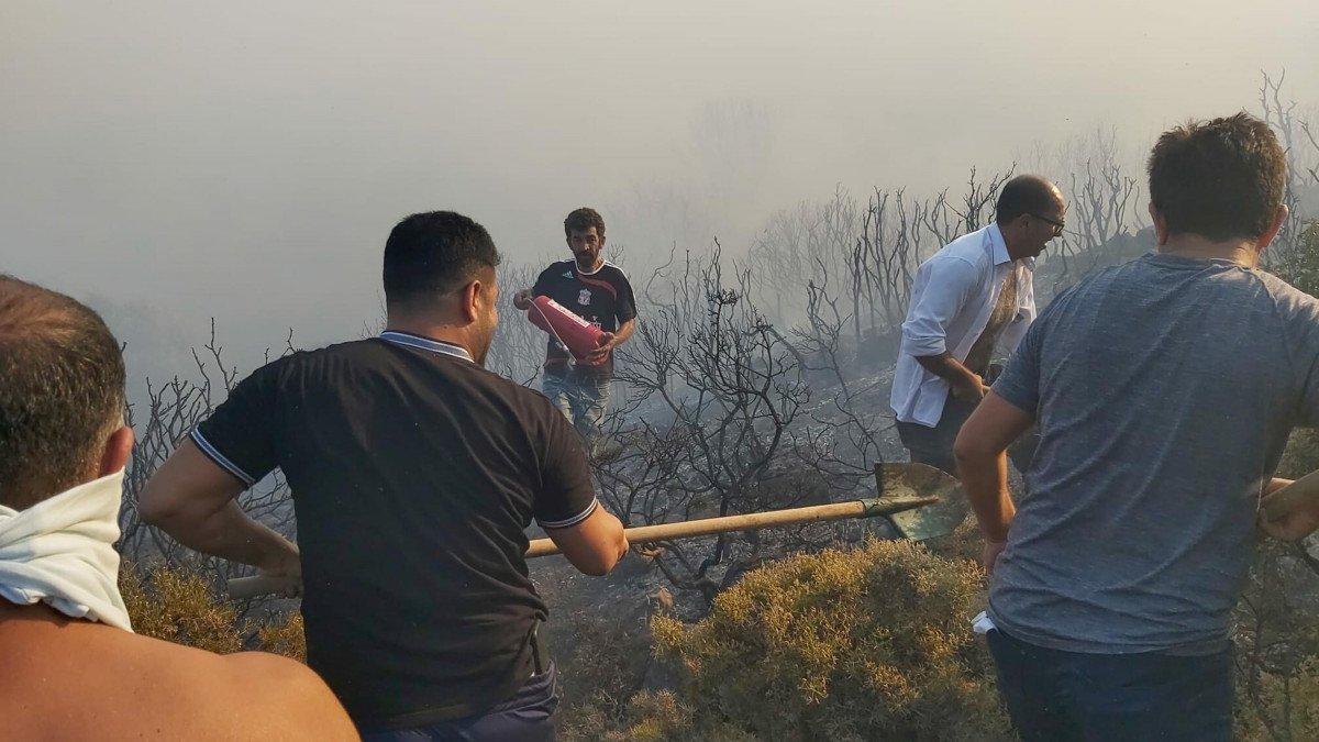 Datça da makilik ve zeytinlik alanda yangın çıktı #5