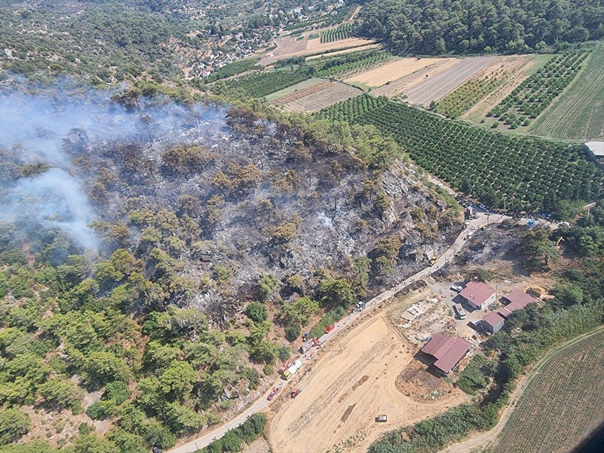 Dalaman da orman yangını çıktı #11