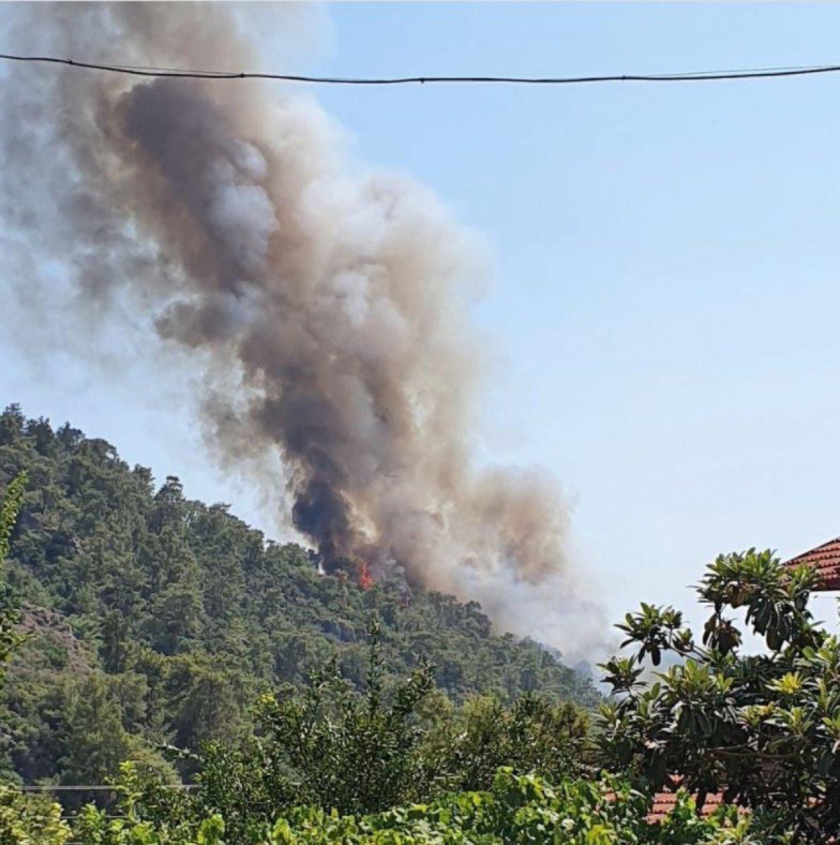 Dalaman da orman yangını çıktı #20