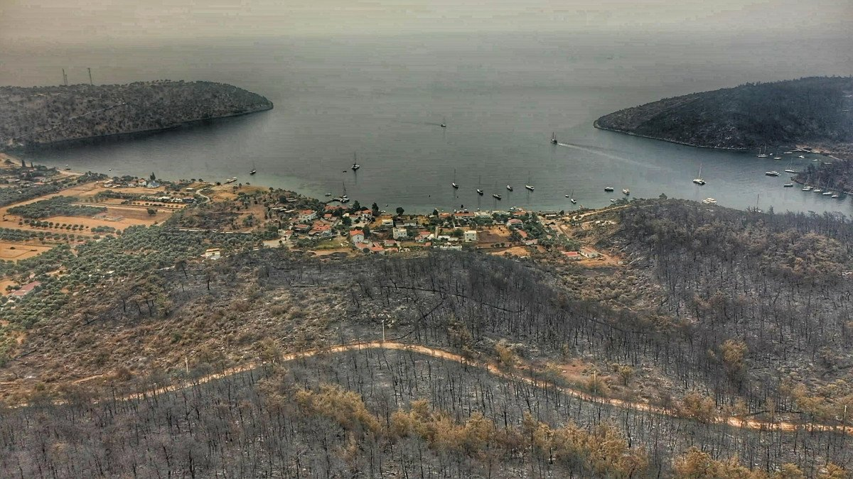 Orman yangınlarının çıktığı Bodrum ve Milas ın son hali  #1