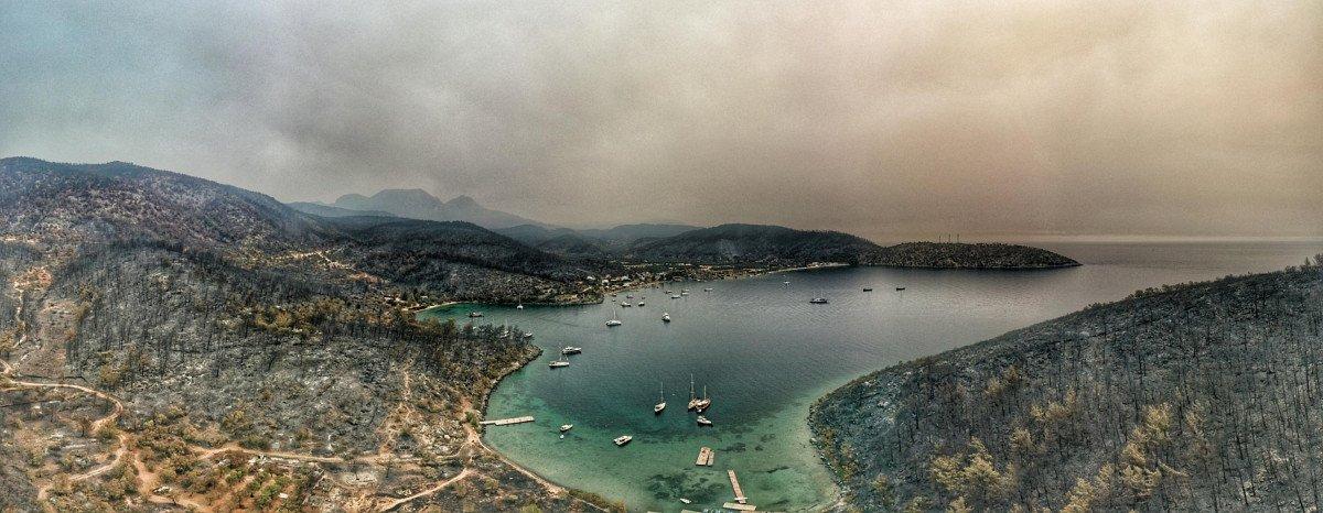 Orman yangınlarının çıktığı Bodrum ve Milas ın son hali  #7